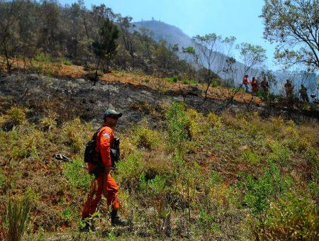 Christino propõe criação da Brigada Nacional para a prevenção e combate a incêndios florestais